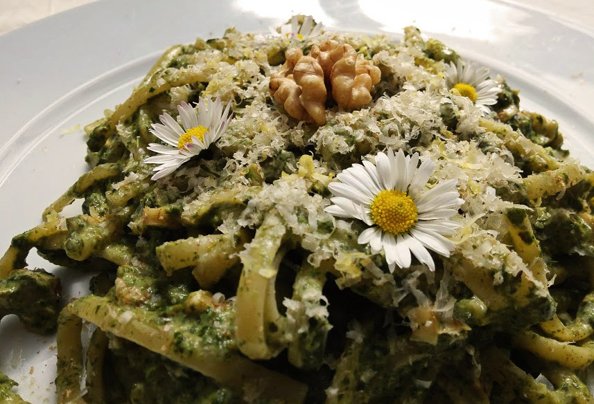 Zesty Spring Ground Elder and Walnut Pasta